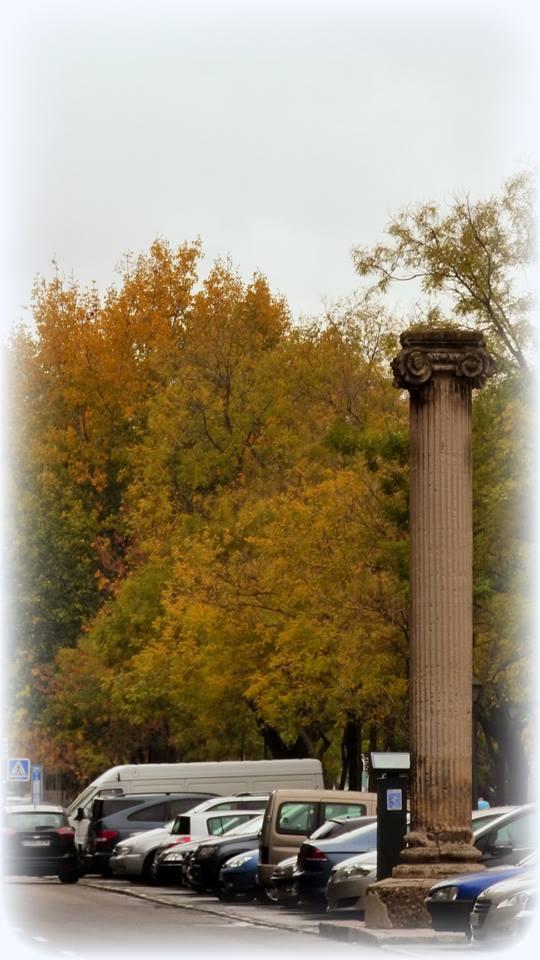 Columna del río Manzanares.